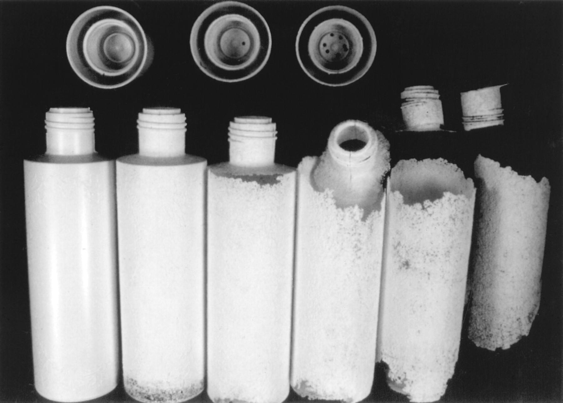 nhựa sinh học phân hủy